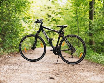 Web card bici